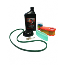 DR Maintenance Kit TR4 B&S 8.75 Engine