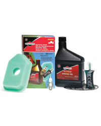 Briggs amp Stratton ClassicSprint Blue Filter Engine Servicing Kit